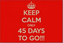 如果上班45天還不適應,就別撐了吧!